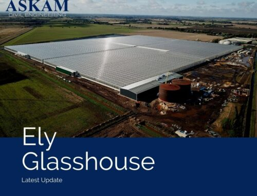 Ely Glasshouse Update